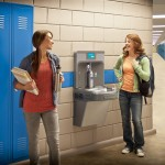 ADA Drinking Fountain Cad