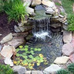 Backyard Pond Fountains
