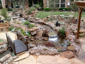 Backyard Water Feature Ideas