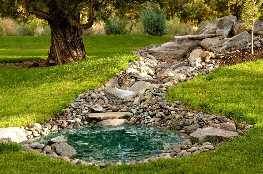 Backyard Water Features for Birds