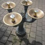 Bubbler vs Water Fountain