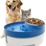 Cat Water Fountain Bubbler