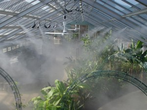 DIY Greenhouse Misting System