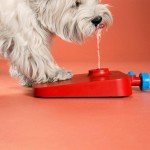 Dog Drinking Fountain Hose