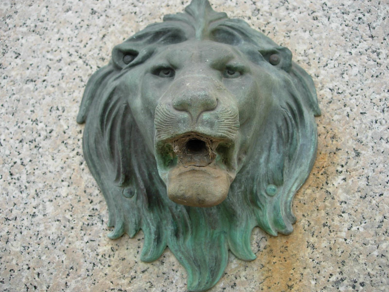 Fountain Lion Head