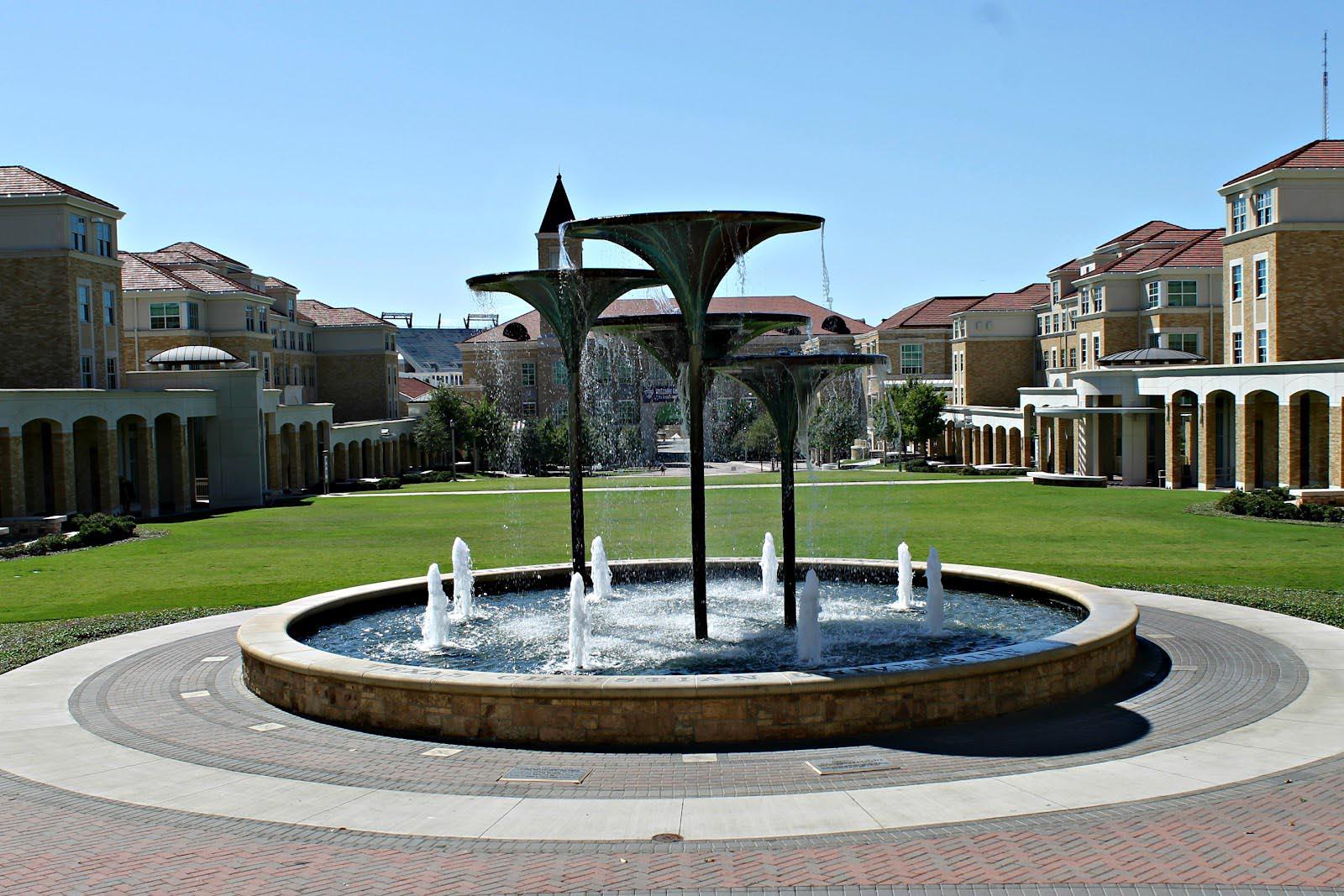 Frog Fountain TCU