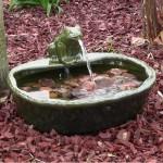 Frog Solar Fountain
