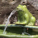 Frog Water Fountain