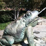 Frog Water Fountains