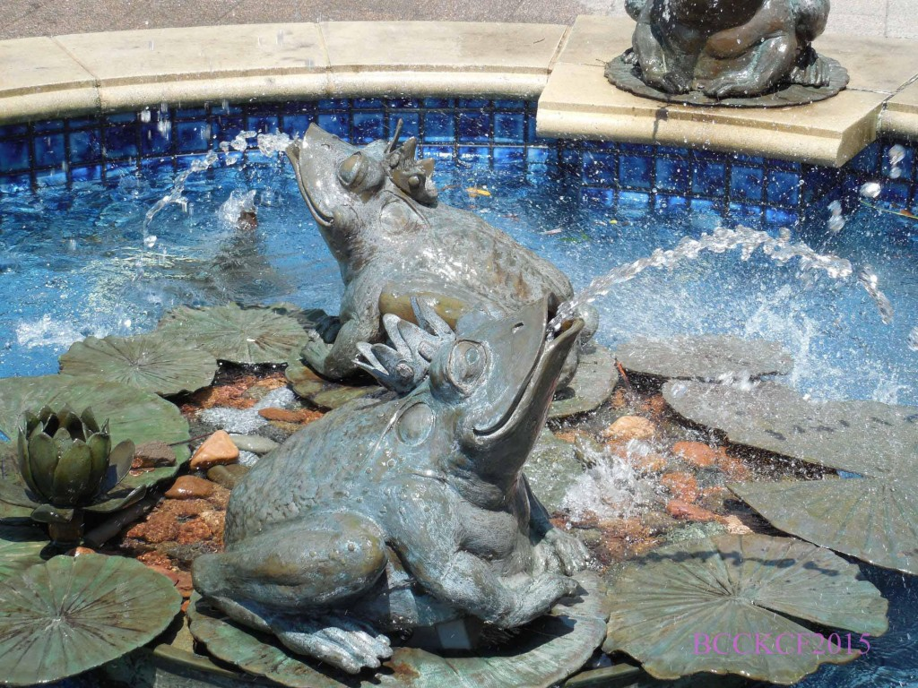 Frogs Fountain Valley