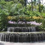 Garden Waterfalls and Fountains