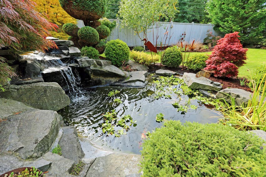 How to Build Backyard Water Features