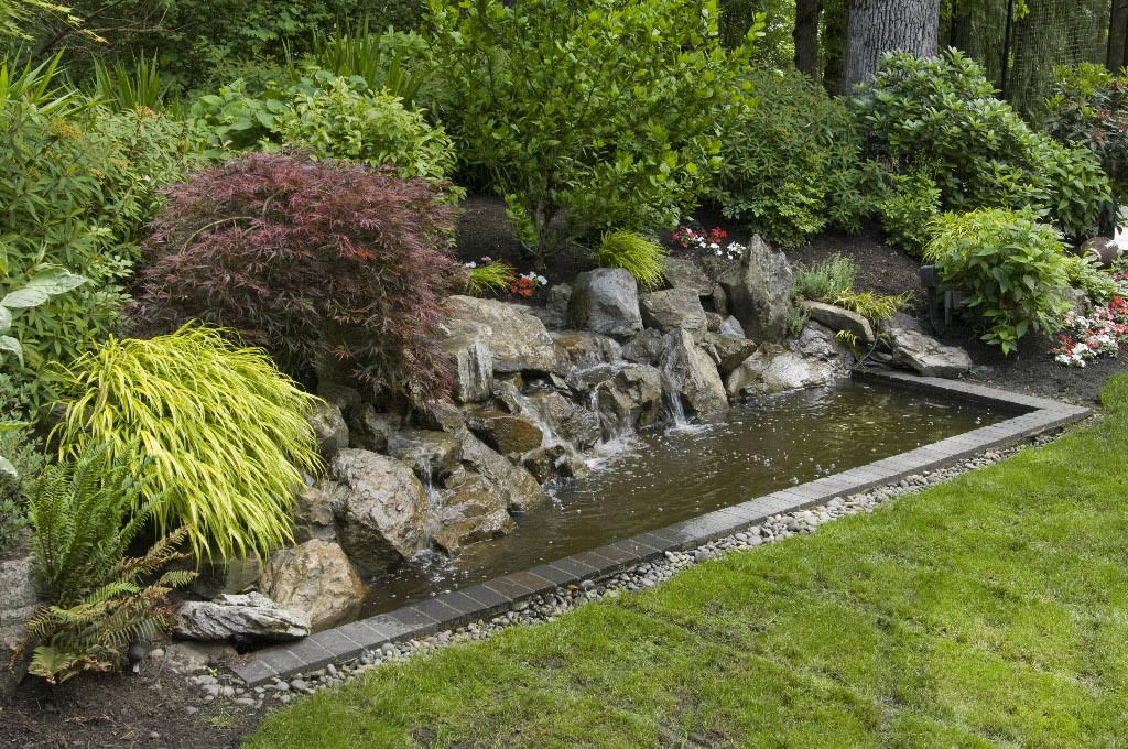 Inexpensive Backyard Water Features