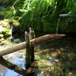 Japanese Bamboo Water Fountain
