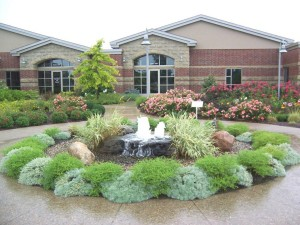 Landscape with Water Fountain Ideas