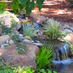Landscapes with Water Fountains