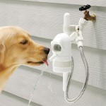 Large Dog Drinking Fountain