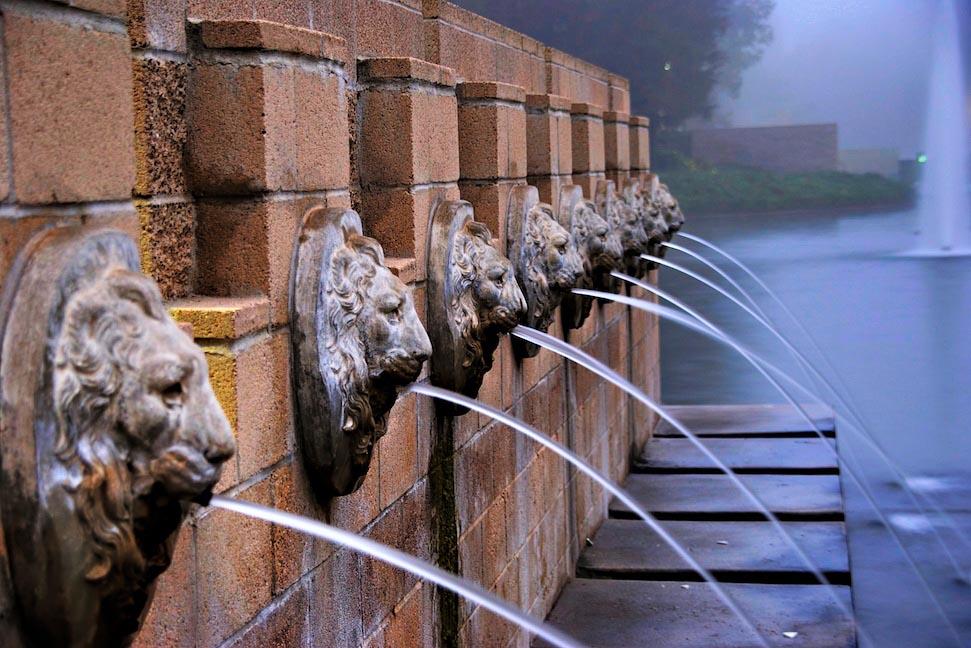 Lion Fountain Head