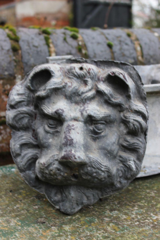 Lion Head Fountain Spout