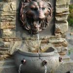 Lion Water Fountain