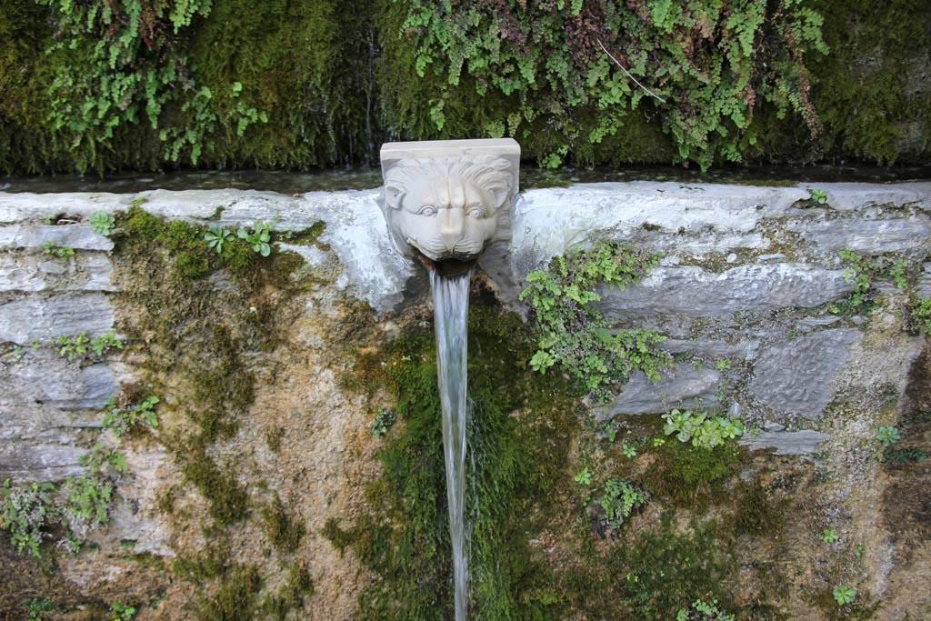 Lions Head Fountain Spout