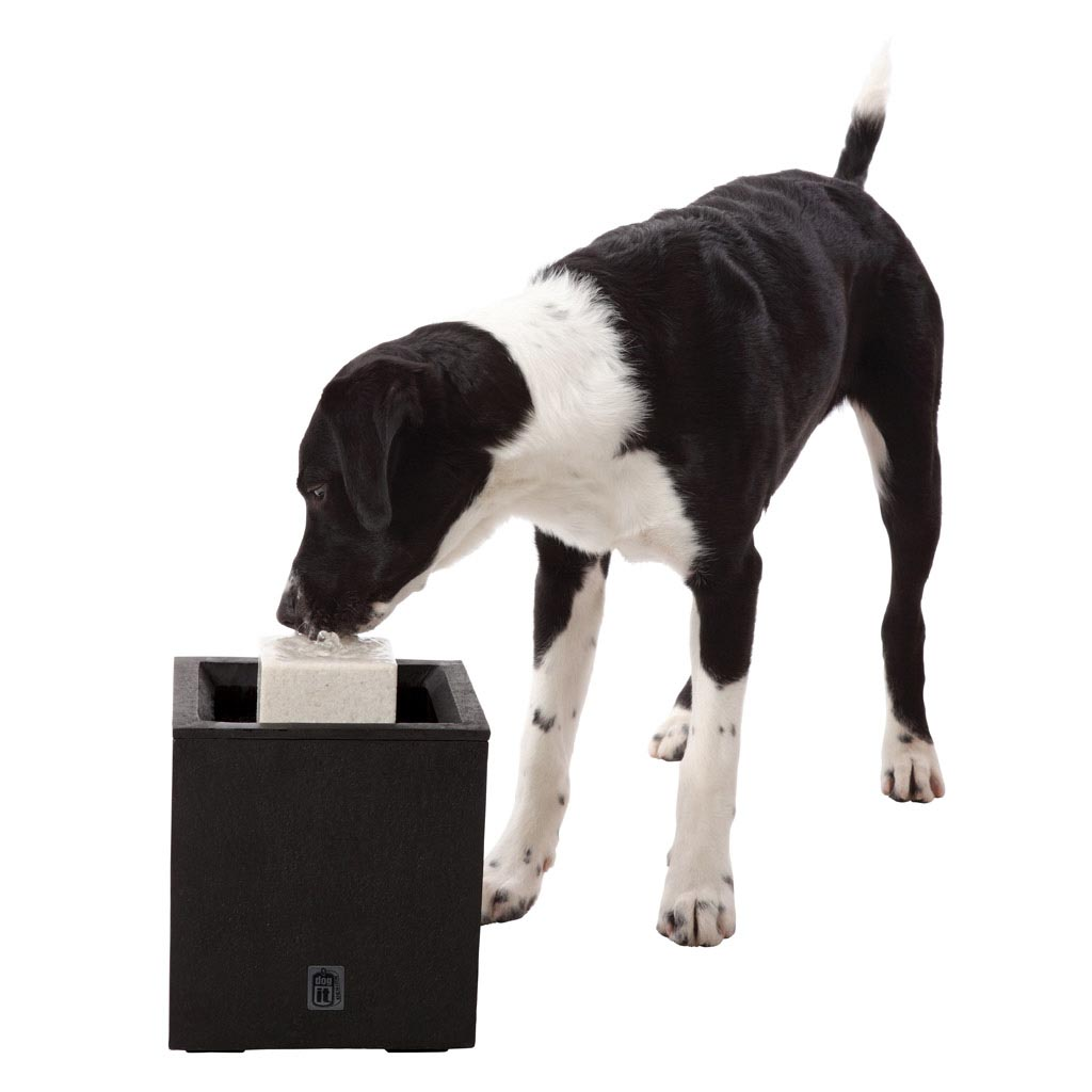 Outdoor Drinking Fountain with Dog Bowl