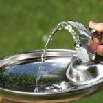 Outdoor Water Fountains for Schools