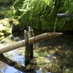 Rocking Bamboo Fountain