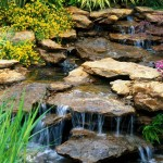 Small Water Feature Backyard