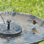 Solar Powered Birdbath Fountain