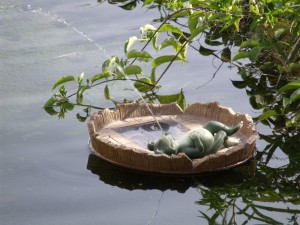Solar Water Fountain for Ponds