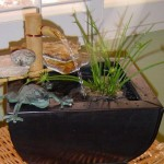 Water Fountains for Homes