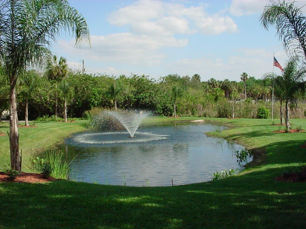 Water Ponds and Fountains